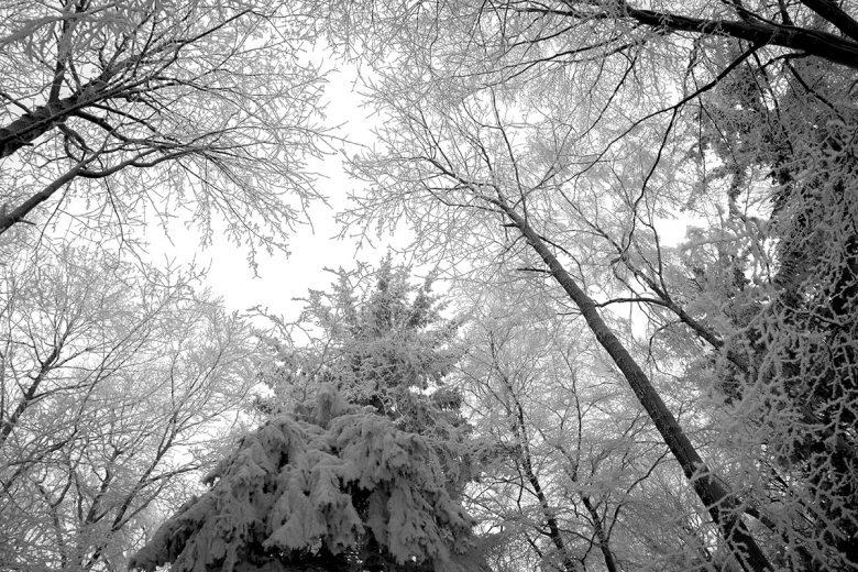 wspomnienie zimy